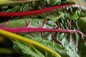 Méregtelenítő zöldségturmix